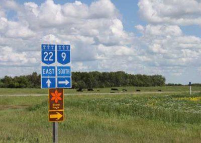 Junction 9 & 22